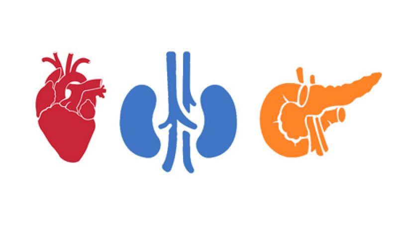 Cardio-Renal-Metabolic (CaReMe) partnership