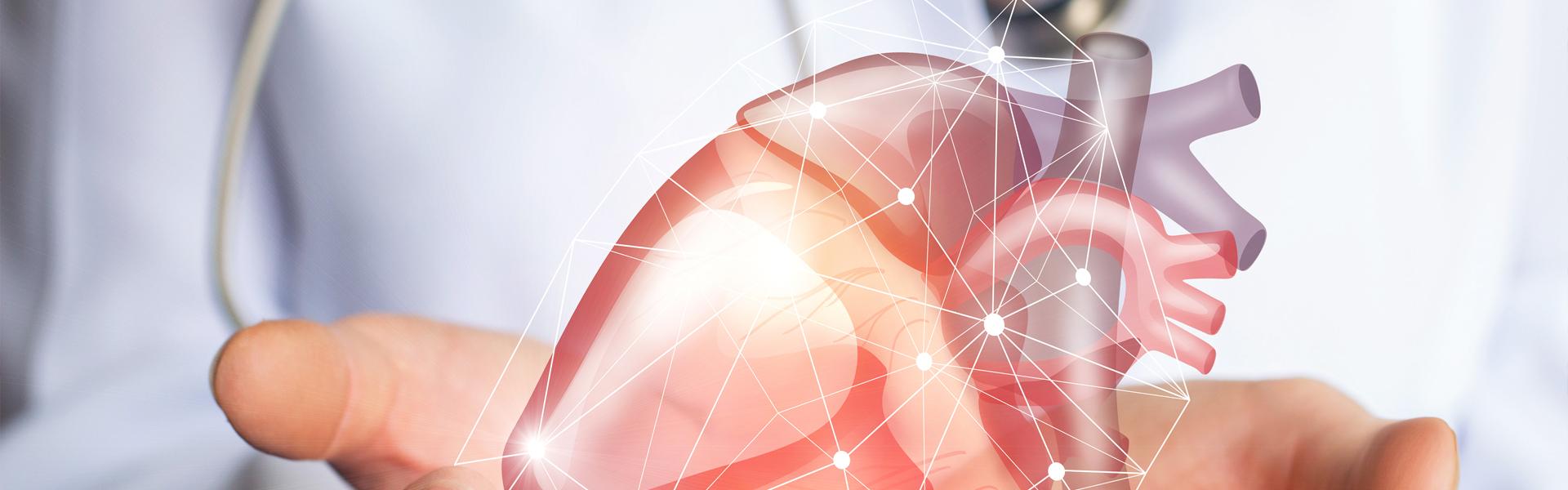 Digital Cardiology Banner